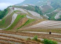 淘宝村:成长的烦恼 ——《中国淘宝村》札记之三