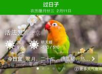 """过日子:中医爆款,手机""""大白""""(节选自《""""移动互联网 """":中国双创生态研究报告》)"""