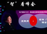 """陈文玲:互联网与""""新实体经济"""""""