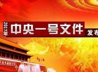 """阿里研究院盛振中:今年中央一号文件,""""电子商务""""出现了8次"""