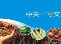 """南开大学王金杰:""""互联网+农业""""将成为推动供给侧改革新产业业态"""