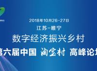 活动预告 | 第六届中国淘宝村峰会开始报名啦