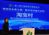 外宾点赞中国淘宝村经验:应推向全球,为世界减贫提供新思路