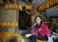 阿里巴巴女性脱贫:让女性成为乡村振兴的中坚力量